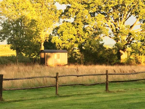 Jo Simpson's writer's den & she-shed from Blackdown Shepherd Huts