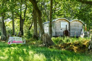 Blackdown Brace Shepherd Hut